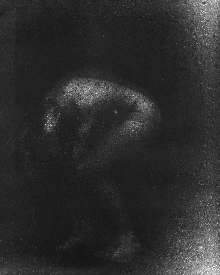 1986 Strahlende 40