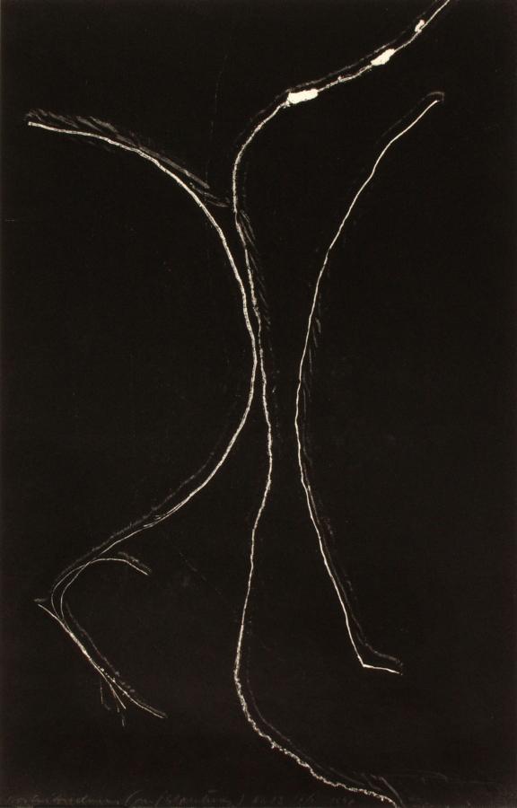 1998 Szymborska Night Picture 13
